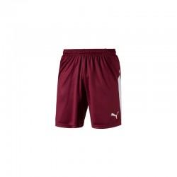 LIGA Shorts Cordovan-Puma...