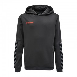 hmlAUTHENTIC POLY HOODIE...